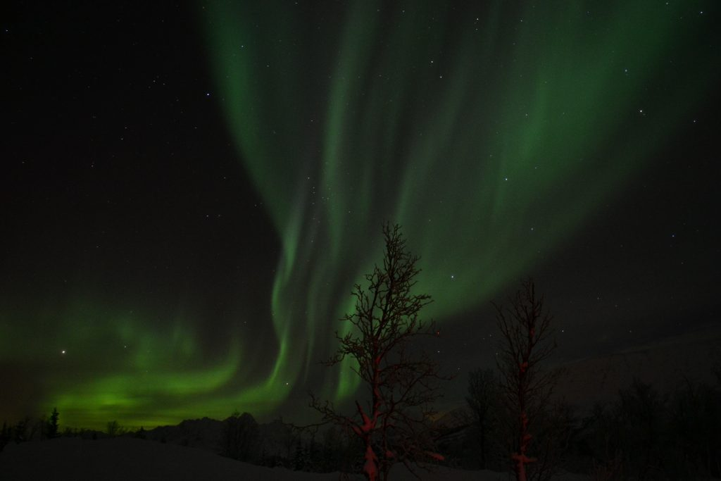 Non-stop Noor: The best things we did in Lapland - aurora borealis in Norway
